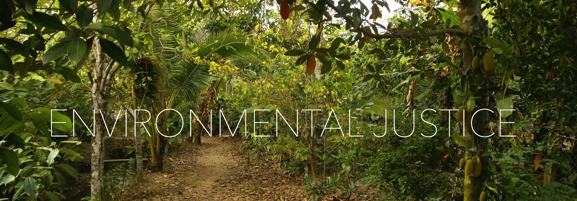 Environmental2